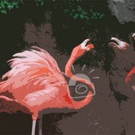 Cut Out Fighting Flamingos