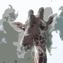Cut Out Giraffe