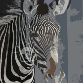 Cut Out Zebra