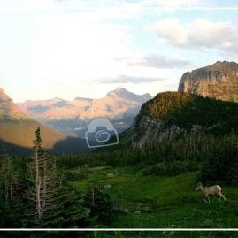 Logan Pass (Border)