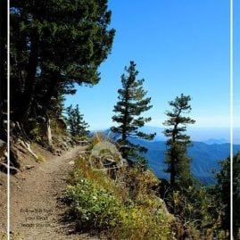 La Luz Trail and quote (Border)
