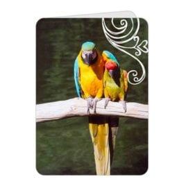 Friends Swirl – 5×7 Card
