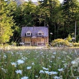 Ranger Cabin in Daisies
