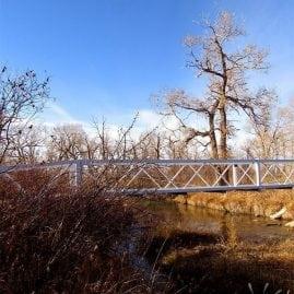 Jones Memorial Park Bridge