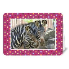 Sac Zoo – 5×7 Card
