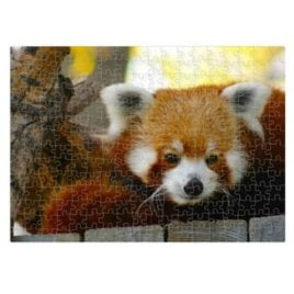 Red Panda – 252 Piece Puzzle