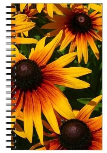 black eyed susans notebook